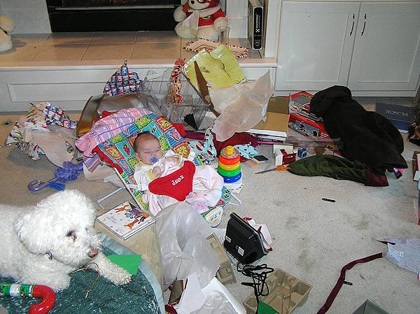 Chloe at Christmas 2009