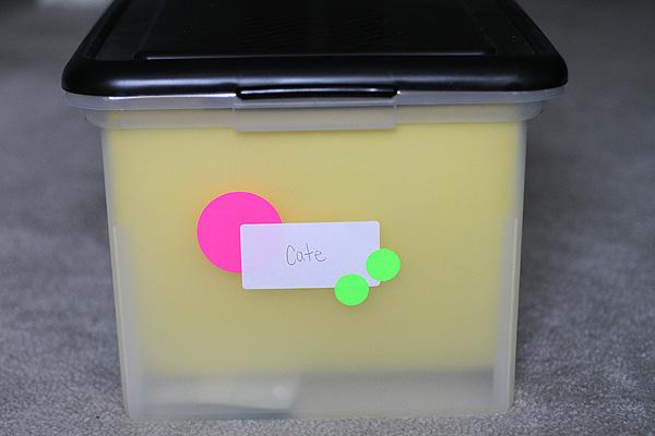 File Boxes 1