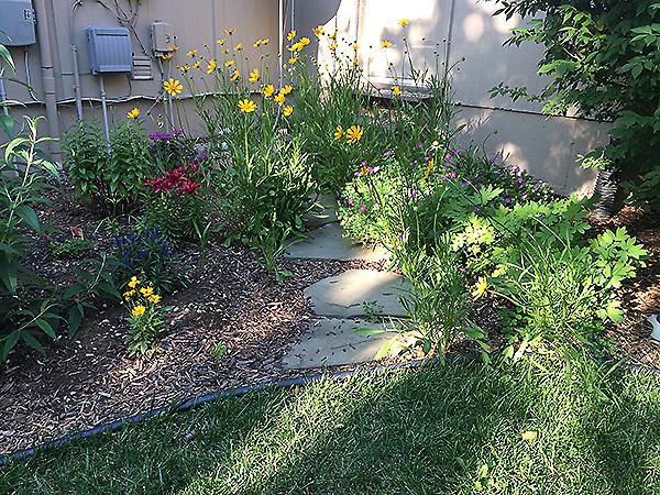 Cutting Garden in May 1