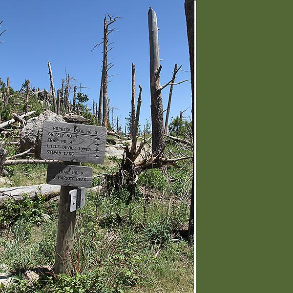 Harney Peak 3