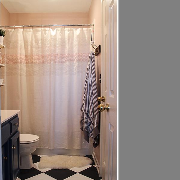 Bathroom Reveal 8
