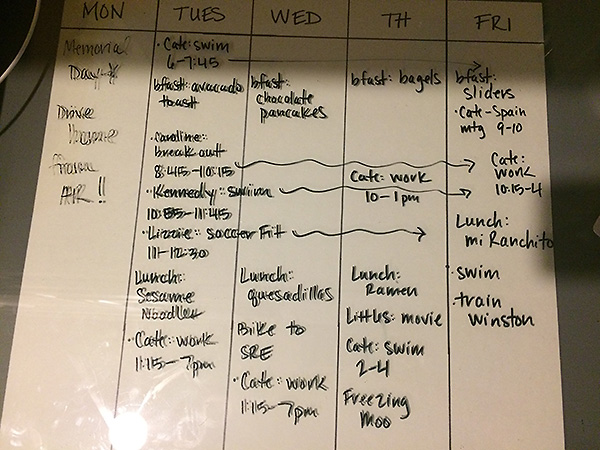 Summer Schedule Week 2