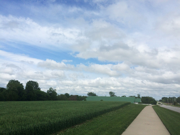 View from my run