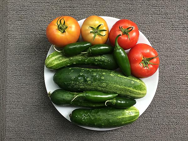 Garden Harvest 2